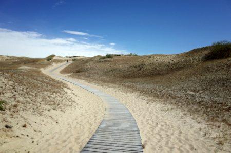 Walk through the Dead Dunes